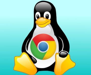 Error en la firma del repositorio de Google para Linux: Solución